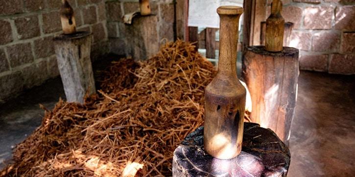 Cerimonia dell'ayahusca in Amazzonia